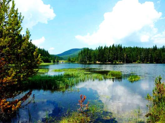 снимка: fixstay.com
