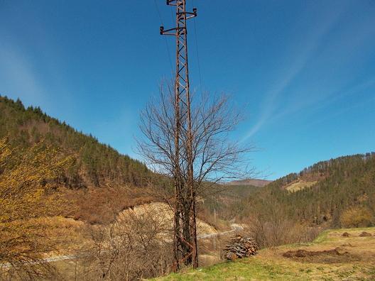 ЕРП отглежда овощни насъждения в стълбове на далекопроводите.