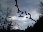 Времето днес е облачно и дъждовно