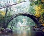 """Резерват """"Дупката""""- изключително природно многообразие в пазвите на Родопа"""