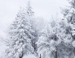 Вече трети ден Сърница е без ток