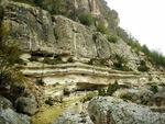 Вкаменената гора в Родопите е уникален природен феномен на повече от 30 милиона години