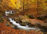 Резерват Кормисош – място, в което ще се влюбите