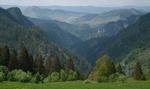 """Резерват """"Шабаница"""" опазва дървета на възраст над 250 години"""