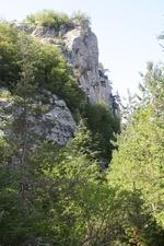 """Резерват """"Вълчи дол"""" – единственият строг резерват в Източни Родопи"""