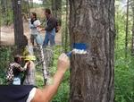 Родопско читалище организира акция за подновяване на маркировката по туристически пътеки до природни забележителности