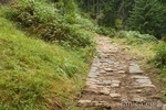 Античен път край село Забърдо – пътешествие по стъпките на предците