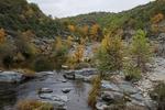 Меандрите на Бяла река – изключителна хубост, съчетана с ценно биоразнообразие