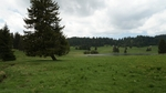 Хайдушки поляни омагьосват с чист въздух и вълшебни гледки