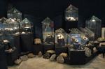 Кристална зала Родопски кристал - Мадан