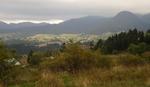 Смолянското село Гела е едно от най-предпочитаните места за почивка в Родопите