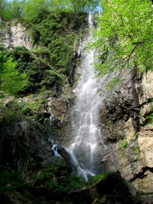 снимка: www.sibir.bg