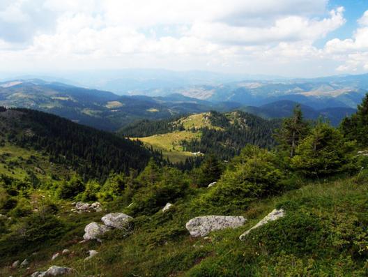 снимка: opoznai.bg