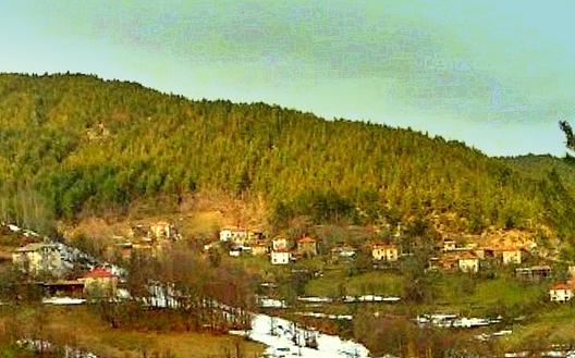 Село Вълчан дол