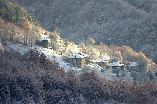 Село Кокорци