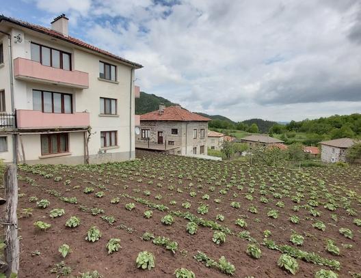 Село Поляна