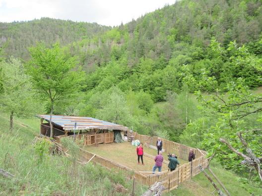 Фермата на Рени в Чепинци
