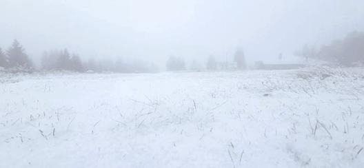 Падна първия сняг в Родопите