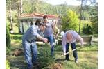 Кандидати за депутати от ГЕРБ – Смолян засадиха 9 дръвчета в Дома за възрастни хора в с. Фатово