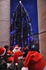 Кърджали грейна- 20-метрова елха освети родопския град