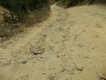 Почистване на свлечени земни маси и изсичане на храсти по пътищата в Смолянско