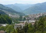 10 села с имена на дървета има в община Смолян