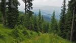 Беглика – разходка сред природата в най-чистия й вид