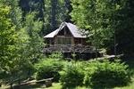 """Горски парк """"Амзово"""" в Родопите с вълнуващи приключения за малки и пораснали деца"""