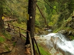 За горещите туристически дестинации в Родопите, разказват професионалистите