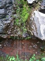 Легенда за произхода на чудодейната, целебна местност Капещия камък