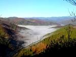 Родопски мохабети: На лов в мъгливо време