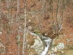 Дърводобива унищожи вододайни зони