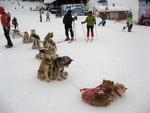 Пампорово - страхотна ски почивка