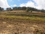 Земеделските неволи в Родопа планина