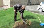 """Кметът на Смолян даде старт на инициативата """"Да засадим дърво"""""""