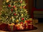 Какво се крие в празничната елха