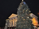 Най-високата в България жива коледна елха заблестя в Кърджали