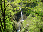Фотински водопад - идеалното място където да прекарате един летен ден