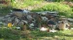 Превърнаха в сметище детска площадка в Кърджали